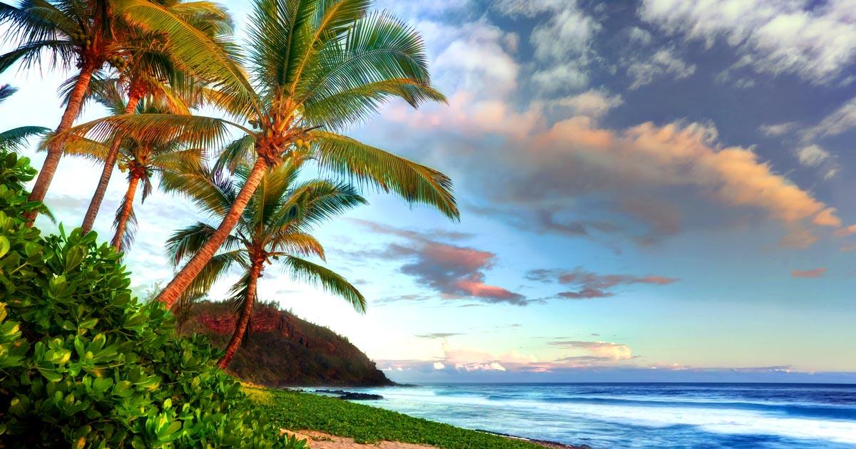 Il voulait aller à la Réunion, la réponse de sa mère vous fera fondre en larmes…