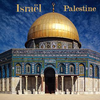 Programme-Volontariat-International-Longue-Durée-Palestine-Israel